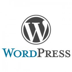 Formation wordpress Auch