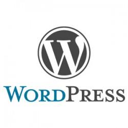 Formation wordpress la Rochelle